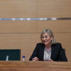 """Cs se opone a los presupuestos de la Diputación para 2019 porque se han hecho """"sin diálogo ni consenso"""""""